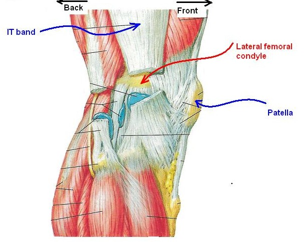 Knee Pain Part 2 Lateral Knee Pain